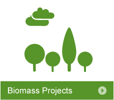 Biomass Projects